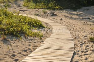 Sandbanks Boardwalk #3329