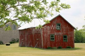 Barn Shed Melville #3126