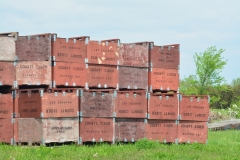 Apple Orchard Boxes #3052