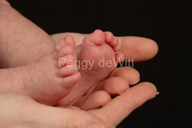 Baby Feet #1615