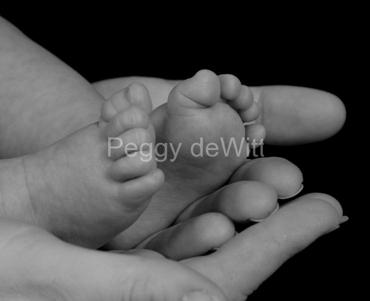 Baby Feet B&W #1617