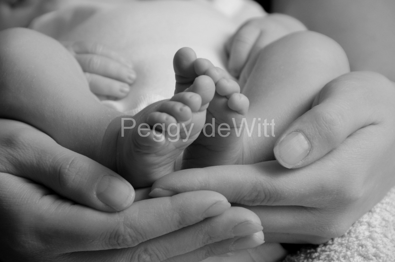 Baby Feet Moms Hands B&W #2603