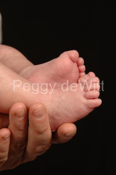 Baby Feet (v) #1616
