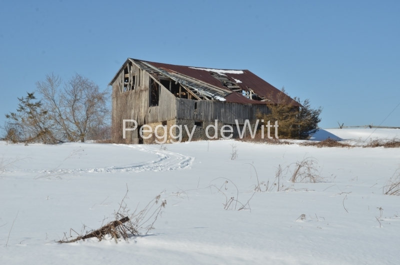 Barn Milford Winter 2014 #3071