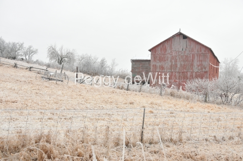 Barn Northport Winter #2913