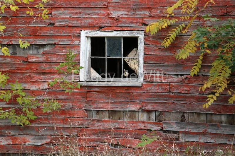 Barn Window Gary #3130