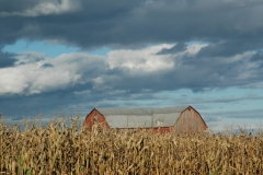 Barn Clouds #1086