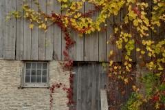 Barn Door Window Fall #3065