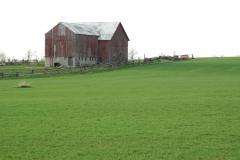 Barn Green Field #1622