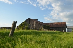 Barn Green Pt #2908