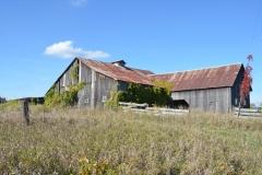 Barn Green Pt Fall #2909