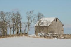 Barn Grey Winter #2768