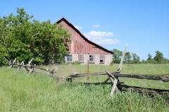 Barn Melville #3124
