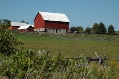 Barn Melville #763