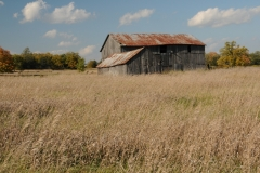 Barn Milford Area #2346