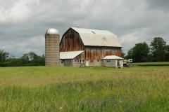 Barn Napanee Summer #1624