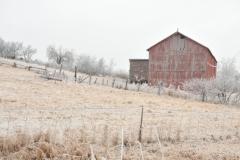 Barn Northport Winter #2913