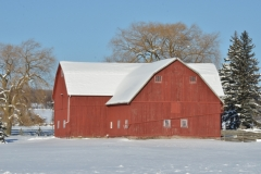 Barn Red Picton Winter #3074