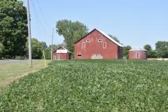 Barn-Red-Soya-Beans-3646
