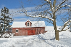 Barn Shed Bloomfield Winter #3079