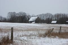 Barn Walkers Winter #1805