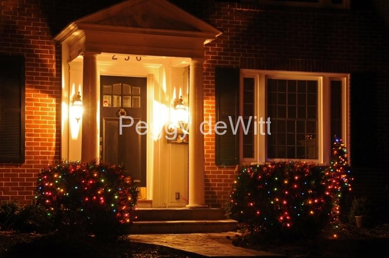 Belleville Door House Christmas #2784