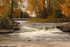 Belleville Moira River Fall #1644