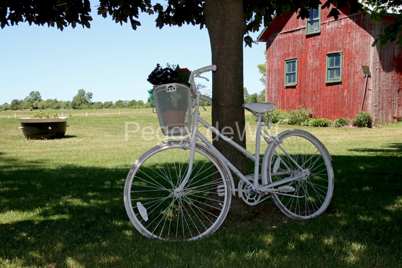 Bike White Melville #3133