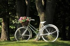 Bike White #2858