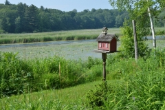 Birdhouse-Black-River-Red-3108