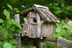 Birdhouse-Sticks-3110