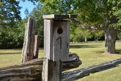 Birdhouse-West-Pt-3111