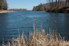 Black River Spring #1770