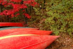Bon Echo Park Red Canoes #1778