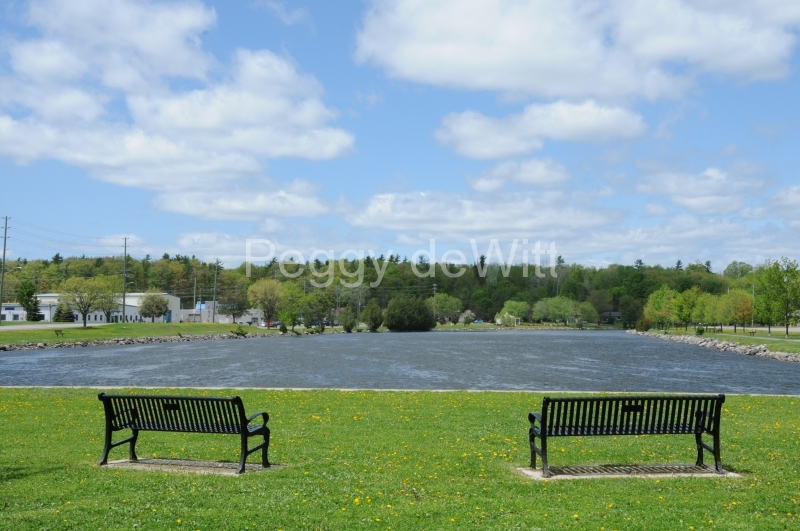 Campbellford Benches #2357