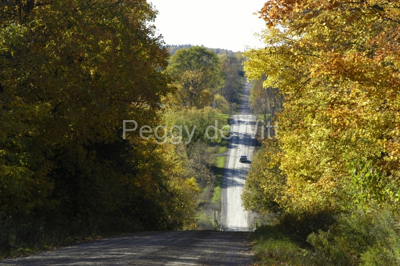 Campbellford Fall Road #1650