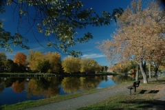 Campbellford Fall #1649