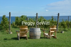Chairs Yellow Cider Co #3162