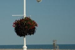 Cobourg Beach Lamp Post (v) #1334