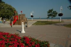 Cobourg Victoria Park Flowers #1333