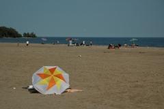 Cobourg Victoria Park Umbrella #1332