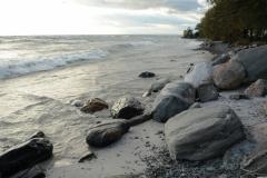 Consecon Rock Beach #2494