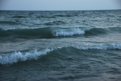Consecon Stinson Block Waves #2890