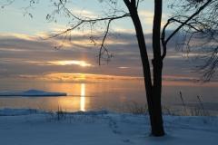 Consecon Sunset Tree Winter #2894
