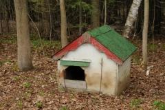 Dog House #1669