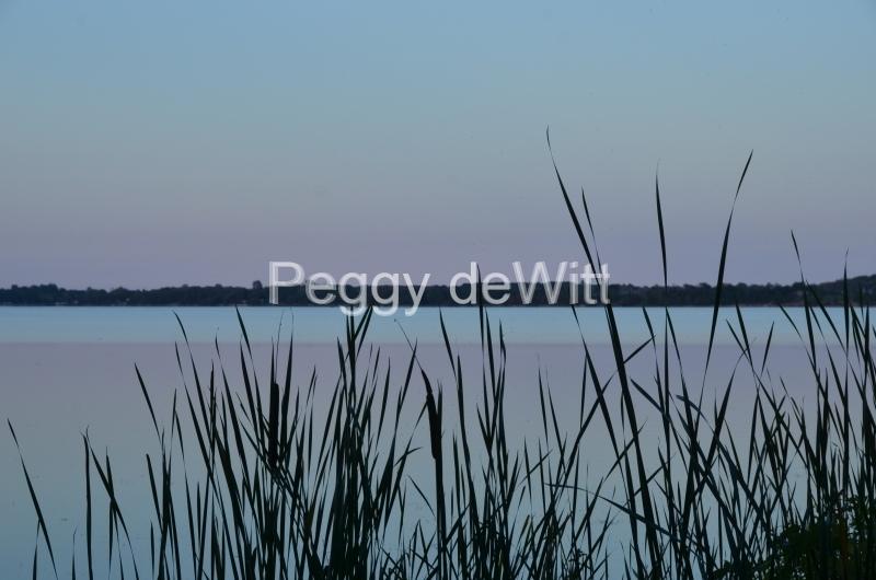 East Lake Bullrushes Blue #2959