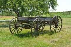 Wagon Orchard #3445