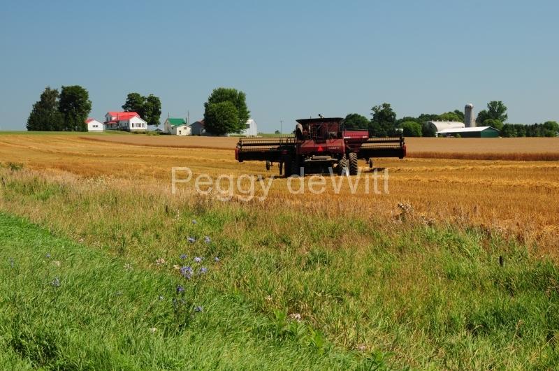 Farm Combine Bloomfield #2499