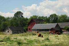 Farm Lonsdale #1718