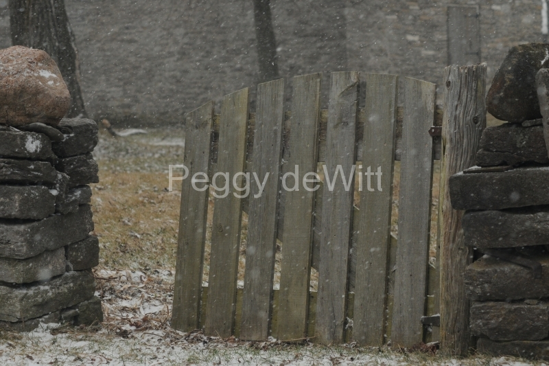 Gate Amherst Island Winter #2542